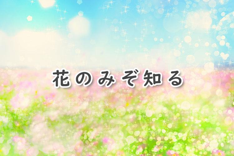 花のみぞ知る(BL漫画)のあらすじ・感想ネタバレ!これぞ純愛BLラブストーリー