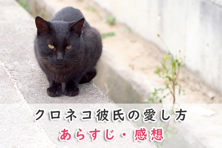 クロネコ彼氏の愛し方(BL漫画)のあらすじ・感想ネタバレ!クロネコ彼氏シリーズ【3】