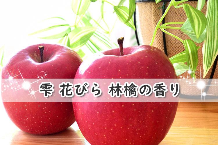 雫 花びら 林檎の香り
