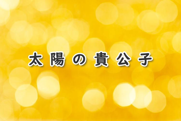 太陽の貴公子(BL漫画)のあらすじ・感想ネタバレ!異国の王子様と一般青年の恋!