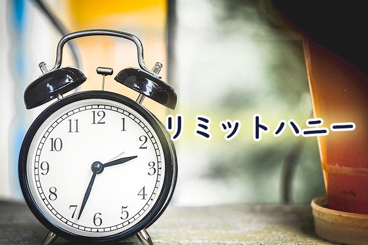リミットハニー(BL漫画)のあらすじ感想ネタバレ!レンタル彼氏とラブラブ